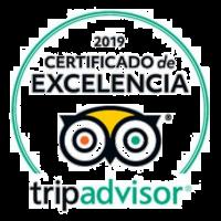 CERTIFICADO-TRIP-2019